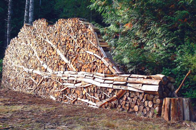 Quality Firewood Storage Shed Plans